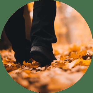 Jeseň je tu, pripravte sa... (2. časť)